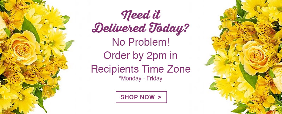 Need It Delivered Today? No Problem! Order by 2pm in Recipients Time Zone *Monday-Friday Shop Now